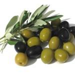 1263902575_olives_1600x1200