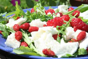 salat_jagody_s_rukkoloy