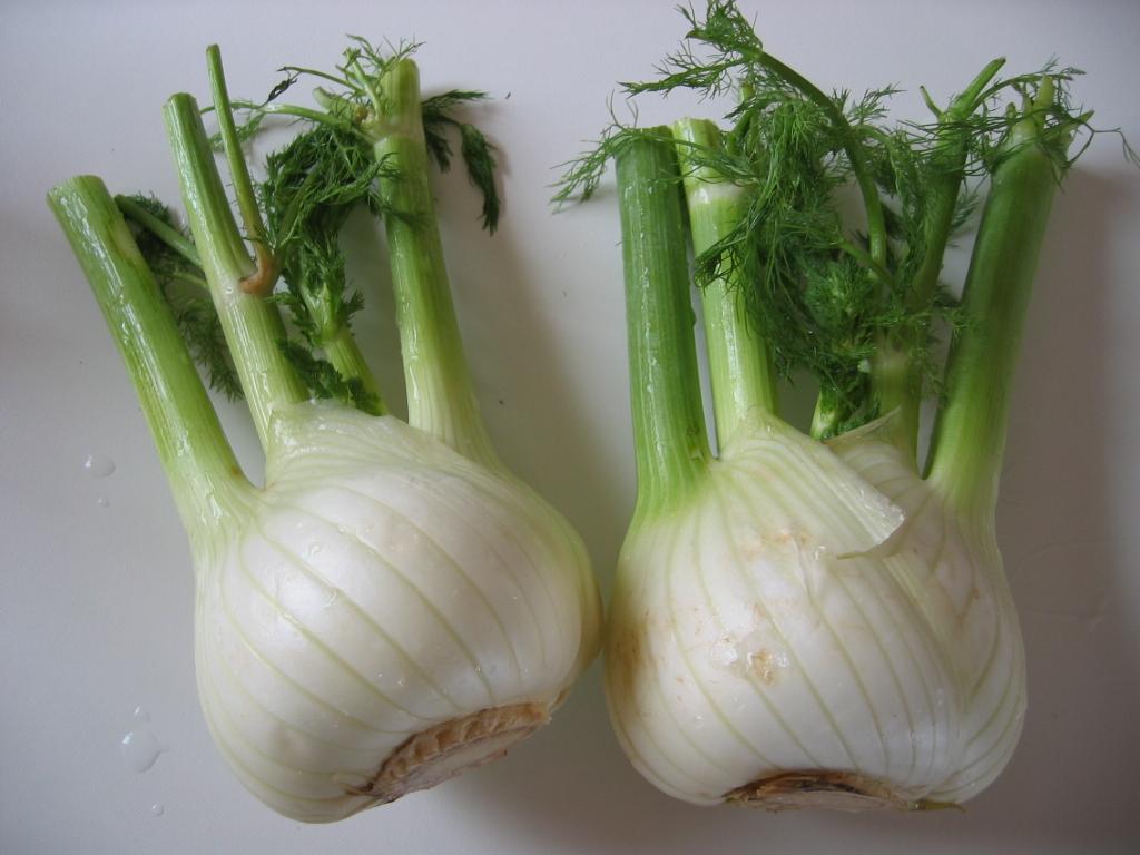 салат овощной весенний с фенхелем